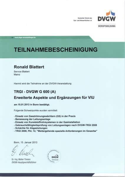 2013-01-15 TRGI-DVGW G 600 (A) Erweiterte Aspekte und Ergänzungen für VIU (Kopie)