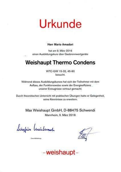 2016-03-09 Weishaupt - Thermo Condens - Amadori, Mario (Kopie)