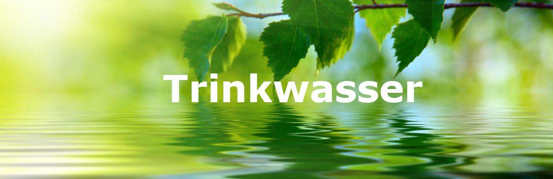 Trinkwasser-Hygiene